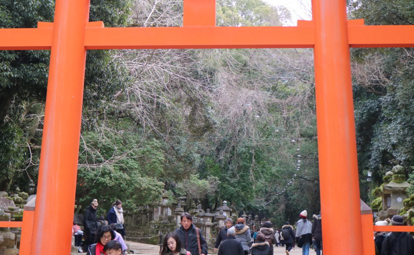 【奈良公園】ウォーキングマップ&サイクリングコース
