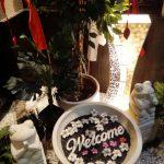 【ベビーフェイス】オムライス、ナシゴレンが有名な奈良のバリ風カフェ・学生、子連れに人気の理由は?