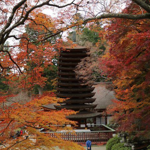 【談山神社】桜・紅葉ハイキングコース・ルートマップ・意外に近い石舞台明日香村