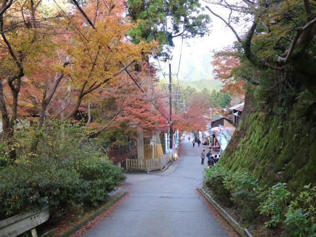 談山神社、紅葉見ながらランチするならココ!グリル紅葉・多武峰観光ホテル・展望レストラン