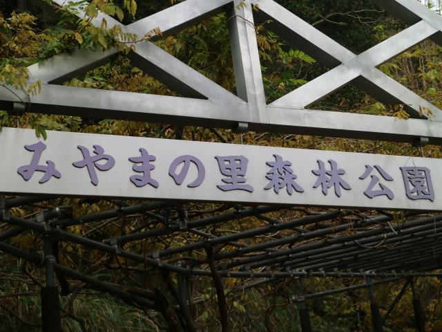 愛徳荘 美山ドームでテニス 明恵峡温泉で露天風呂 山奥の道の駅 SANPIN中津・みやまの里は激安